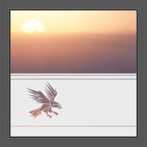 Motiv Greifvogel auf Fensterfolie