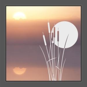 Motiv Schilfgräser mit Sonne auf Fensterfolie