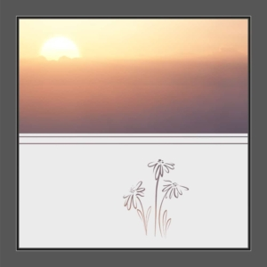 Motiv Blume auf Fensterfolie