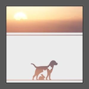 Motiv Tierpraxis oder Tiere auf Fensterfolie