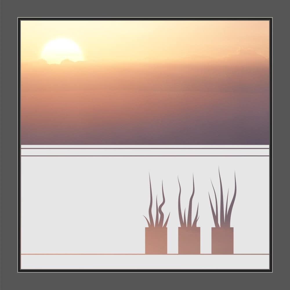 Motiv Pflanzentöpfe auf Fensterfolie